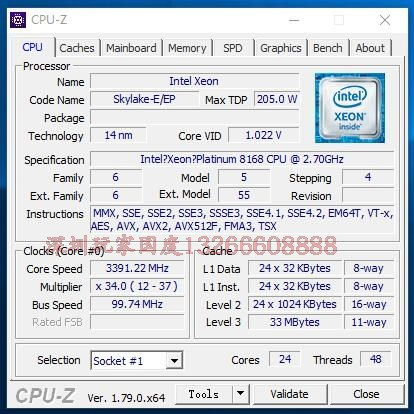 Intel-Xeon-Platinum-8168-CPU-Z