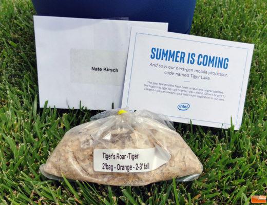 Intel-Tiger-Lake-10nm-CPU-Promotional-Kit_11th-Gen-Mobility-Lineup_1