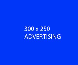 300X250_ADS